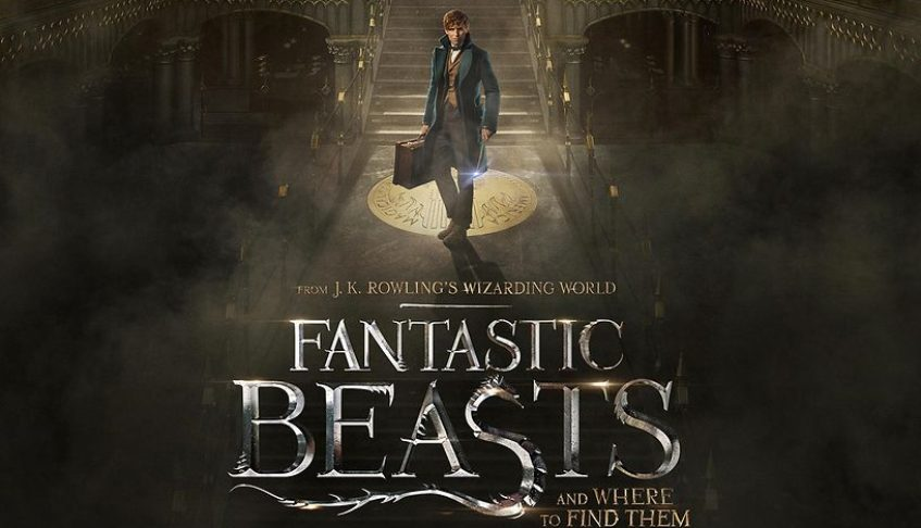 FANTASTIC BEASTS AND WHERE TO FIND THEM : Delighting my curiosity